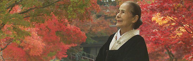Stadtmuseum Japanische Leckereien, Kampfkunstvorführung und Teeverkostung